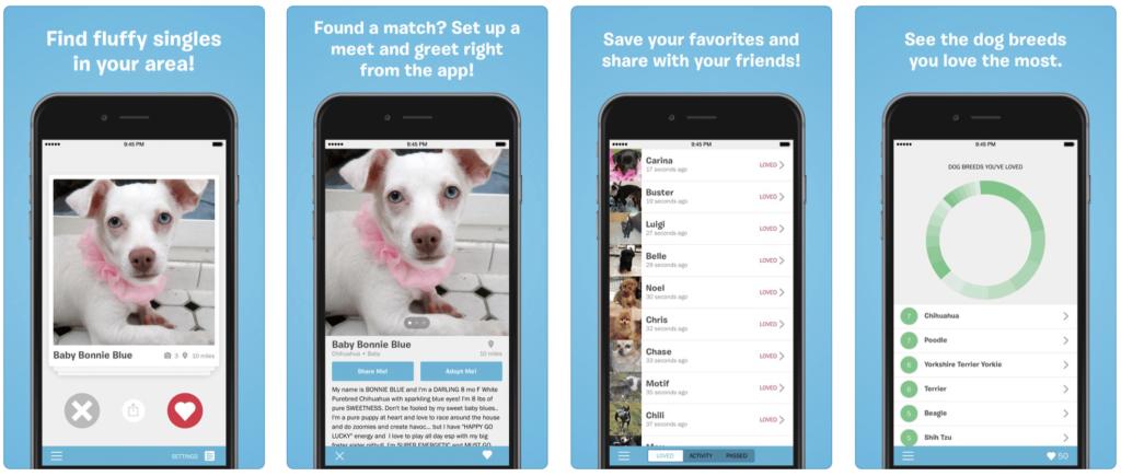 BarkBuddy app