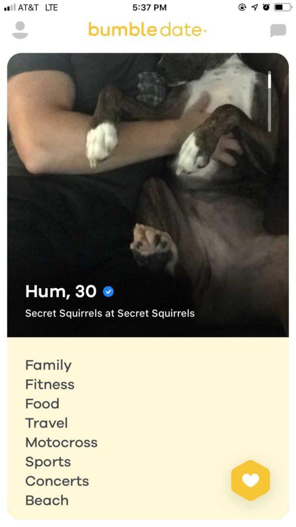 bumble bio example